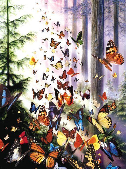 magnifique papillons. Black Bedroom Furniture Sets. Home Design Ideas